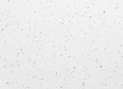 № 55гл Ледяная искра белая