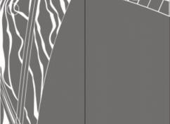 Пескоструйный рисунок для дверей-купе - 1150